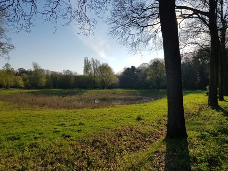 Bosgebied Koolhoven - Discover Tilburg